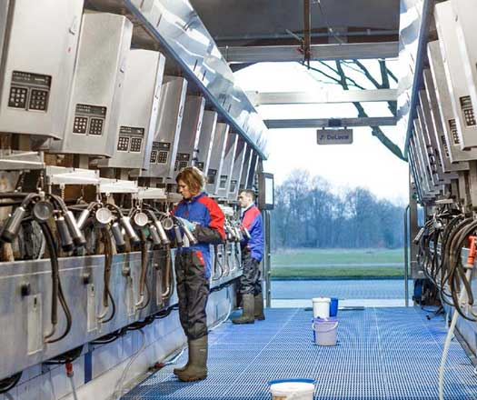 DeLaval Herringbone Milking Parlors
