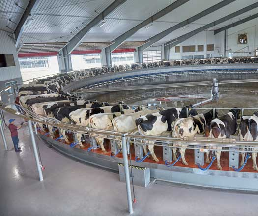 DeLaval Parallel Rotary Parlors