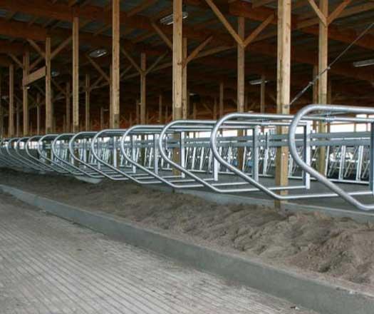 Dairy Free Stalls